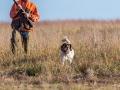 Dallas Ft. Worth Upland Bird Hunt